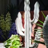 New week! #mondaymood #summerday #summervibes #homedecor #cactus #orfanidishome #kallithea